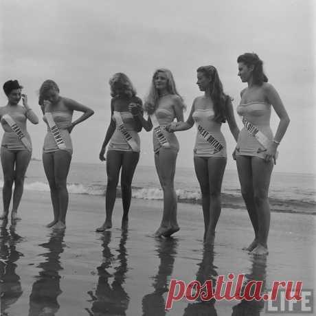 Первая Мисс Вселенная, 1952