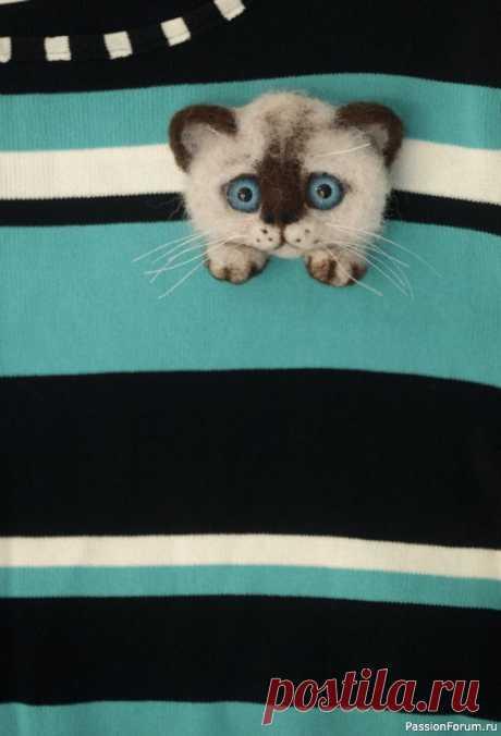 Брошь из шерсти котик сиамский   Валяние. Работы пользователей.