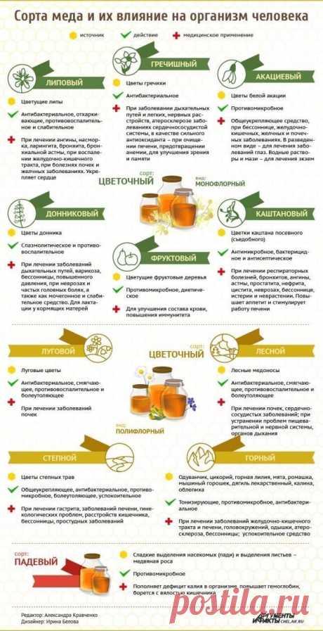 С какой пользой мёд действует на наш организм?