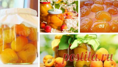 Закрываем абрикосы - 10 рецептов!