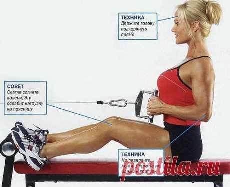 Упражнение дня: тяга к поясу сидя. Упражнения для твоей королевской осанки!