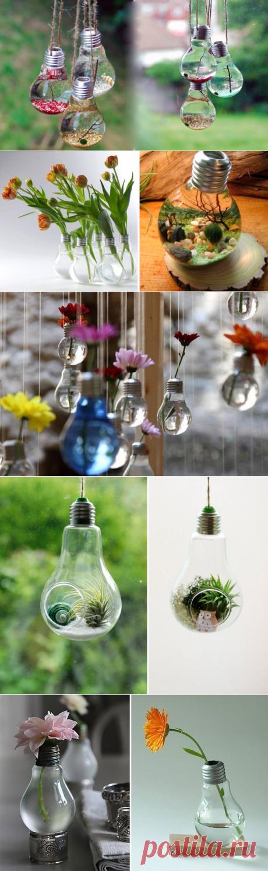 Используем старые лампочки с умом — DIYIdeas