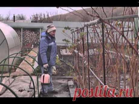 Советы бывалых дачников - отличное видео! Посмотрите - не пожалеете!.