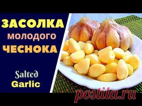 КАК ЗАСОЛИТЬ МОЛОДОЙ ЧЕСНОК Salted Garlic