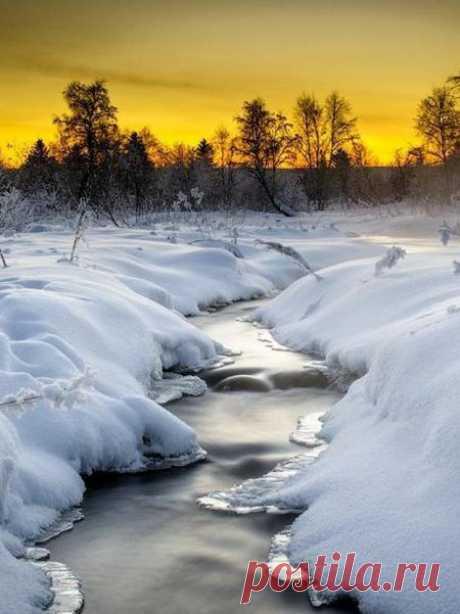 Закончились гастроли января, Февраль-вельможа выступил на сцену. Ещё сильна власть ледяного плена И солнце как осколок янтаря.  По-прежнему метель и снегопад Смыкают белоснежные кулисы. Мороз не допускает компромисса С теплом весны помногу дней подряд.  Но с каждым разом ласковей рассвет, Тихонько просыпается природа. И радует подарками погода И с каждым днём всё ярче солнца свет.  Не думая о хрупкости своей, Подснежники стремятся из-под снега. И пробуждается от зимней нег...