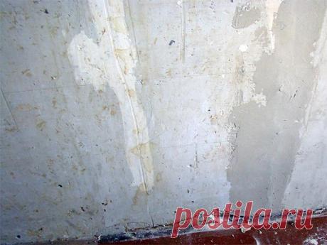 Неровные стены: чем выровнять?  Первейшая проблема, возникающая при ремонте жилища – неровные стены. Они встречаются не только в старых постройках, но даже и в современных новостройках. От качества стеновой поверхности будет зависеть не только визуальное восприятие, но и количество строительного материала, необходимого для выравнивания.