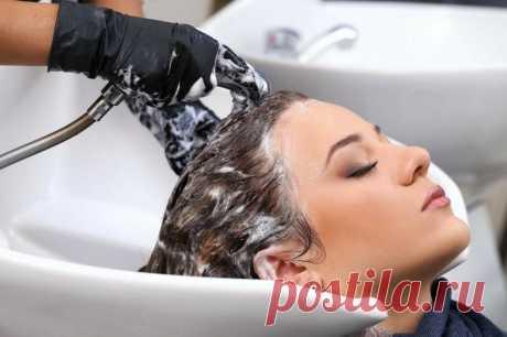 Как парикмахеры разводят шампунь, что после него волосы легкие и блестят: расскажу почему не экономия, а забота о клиенте | Уютный блог домохозяйки | Яндекс Дзен