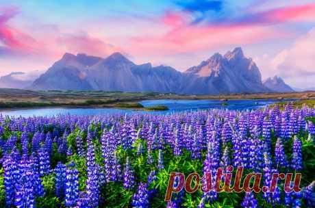Завораживающая Исландия, в которую нельзя не влюбиться. Часть 1 / Туристический спутник