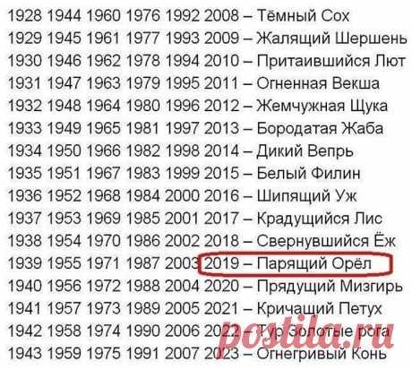 Год парящего Орла: гороскоп на 2019 год по славянскому календарю  