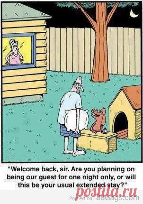 C возвращением, сэр. Вы планируете погостить одну ночь или останетесь на более длительное время? / Неформальный Английский