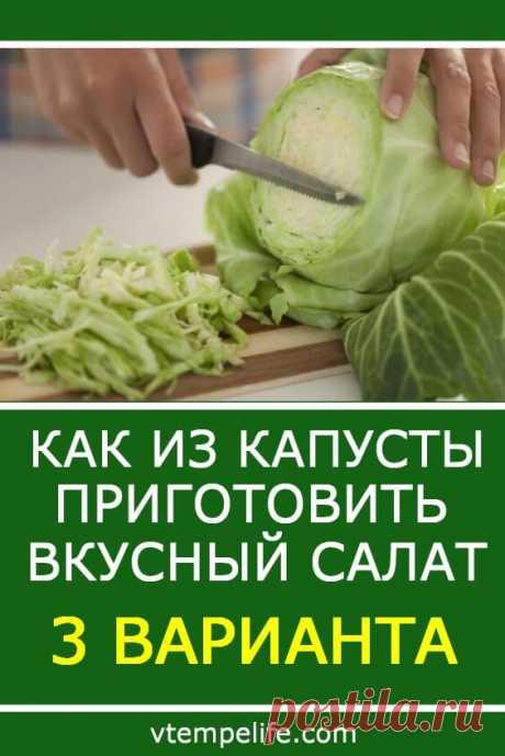 Как из капусты приготовить вкусный салат? 3 варианта | В темпі життя