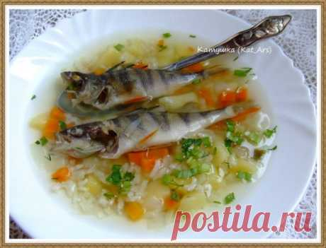 Суп рыбный из окушков с рисом | Русская кухня