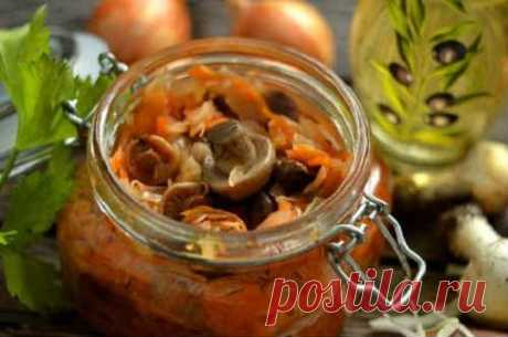 Солянка грибная на зиму с капустой - 6 рецептов приготовления