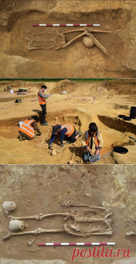 Таинственные обезглавленные скелеты, найденные в Римской могиле. | Fraid | Яндекс Дзен
