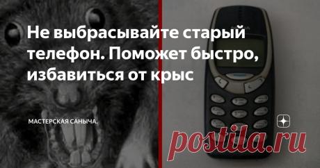 """Не выбрасывайте старый телефон. Поможет быстро, избавиться от крыс Сосед подсказал, действенный способ. Дорогие подписчики и гости канала. До года """"крысы"""", у нас осенью приходили в """"гости"""" , только мыши. Этой осенью, всё изменилось, не в лучшую сторону."""