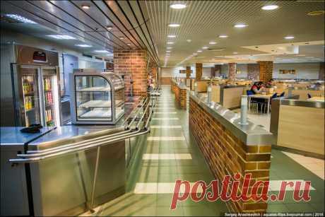 Столовая в аэропорту Домодедово, о которой мало кто знает | TravelManiac | Яндекс Дзен