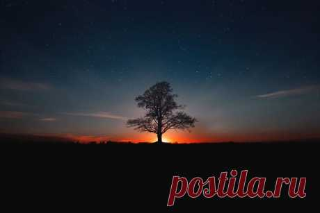 «Провожая закат» Автор снимка – Юрий Столыпин: nat-geo.ru/community/user/197496/. Доброй ночи.