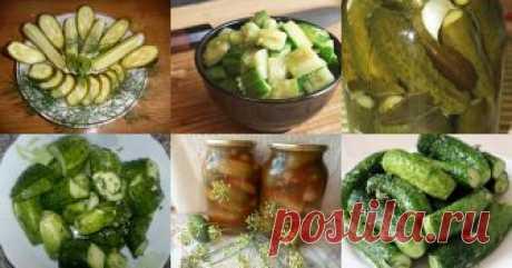 Огурцы - 1218 рецептов приготовления пошагово - 1000.menu Огурцы - быстрые и простые рецепты для дома на любой вкус: отзывы, время готовки, калории, супер-поиск, личная КК