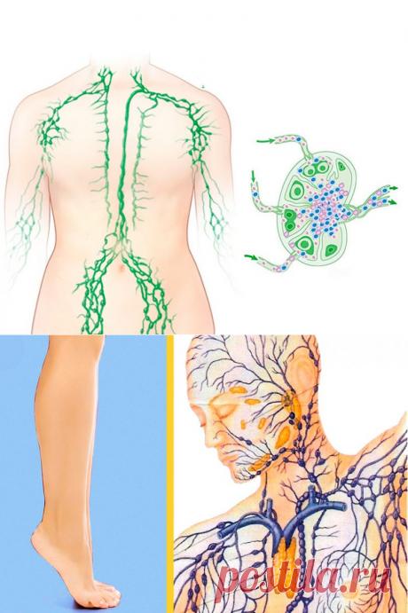 Упражнение для укрепления лимфатической системы / Будьте здоровы
