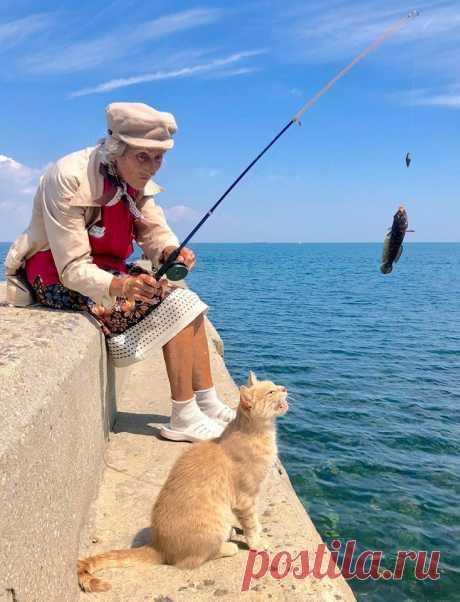 Бабушка и котик: истинная одесситка рыбачит в Аркадии, - ФОТОФАКТ - 048.ua