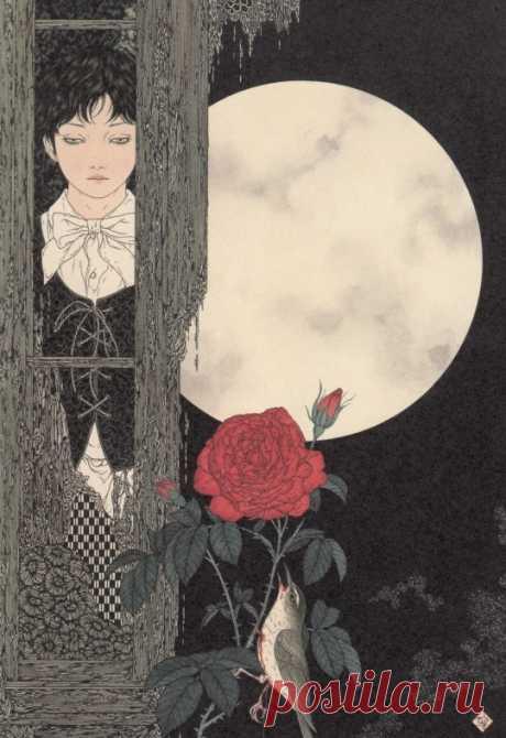 Takato-Yamamoto–Nightingale