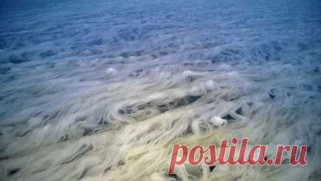 Финское озеро в снежных нитях - Планетарные Новости