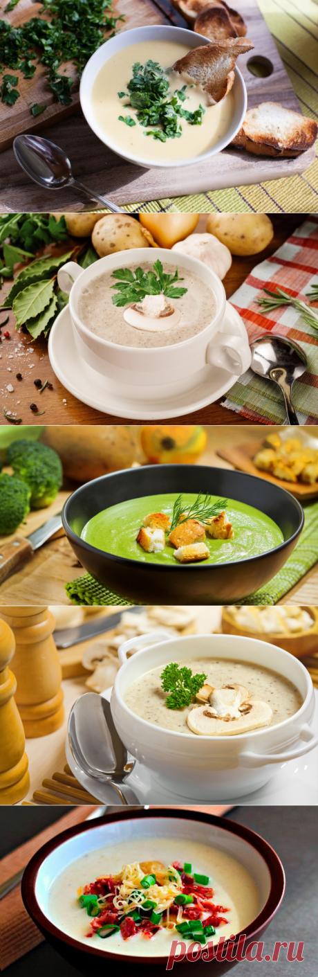 Крем суп: рецепты из шампиньонов, брокколи и сыра