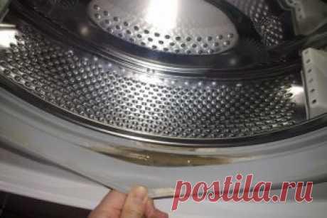 Проверенный способ спасите вашу стиральную машину от опасной плесени ...