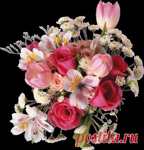 "Pleykast \""Happy birthday Lyudmila!\"" Author of a pleykast: tamara.zhukova. Subject: Congratulations. When: 01.01.2015."