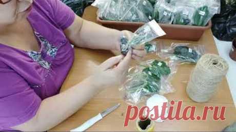Гениально простая упаковка укорененных листиков!!!