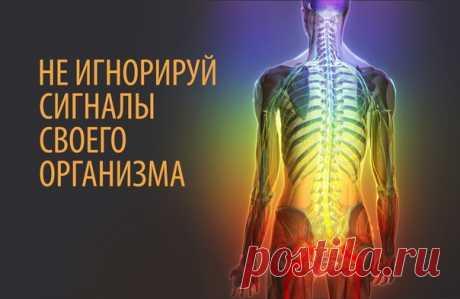 Nuestro organismo y sus señales.