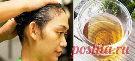 Этот простой трюк заставит ваши волосы интенсивно расти и все будут восхищаться их блеском и объёмом! - Полезные советы красоты