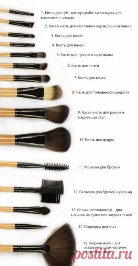 Какие кисти для макияжа для чего правильно использовать, советы