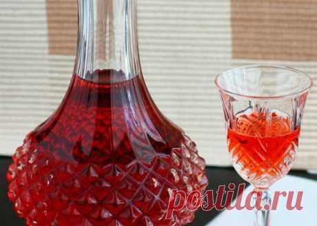 Настойка из красной рябины на водке: рецепт в домашних условиях