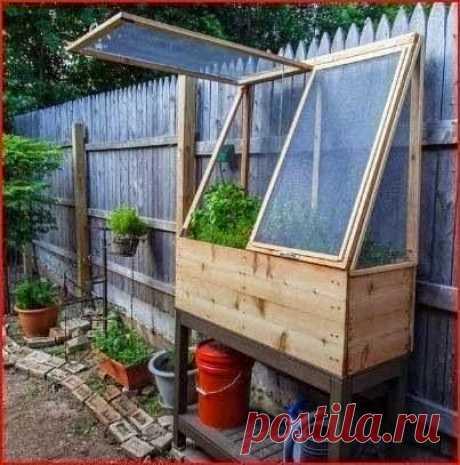 El mini-invernadero interesante \u000d\u000aTal mini-invernadero ahorra perfectamente el lugar en la huerta y es útil para la cultivación de la verdura distinta. Se puede establecerlo a lo largo de la casa o la cerca. Y bajo el mini-invernadero es posible organizar las baldas para sadovog …