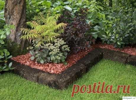 Нужно ли добавлять опилки под деревья и под кустарники — Садоводка