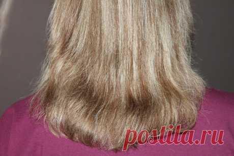 Великолепный эффект для волос от смеси шампуня и желатина. Читайте или смотрите видео. | Марина Жукова | Яндекс Дзен