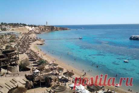 Какой курорт Египта выбрать: что лучше Хургада или Шарм эль Шейх | Блог Озкара Марины