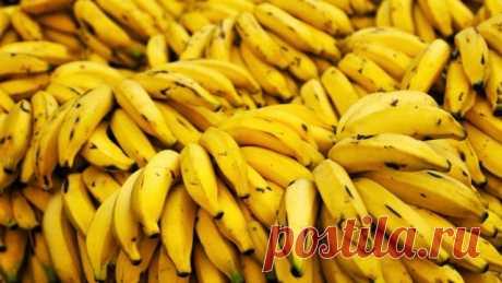 6 причин есть бананы каждый день — Полезные советы