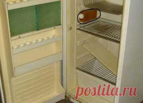 Что можно сделать из старого холодильника - топ самоделок