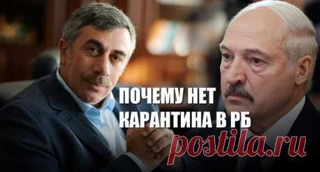 Почему Лукашенко не вводит карантин | Листай.ру ✪