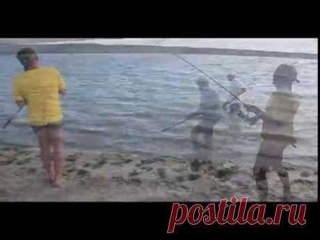 Рыбалка на сазана на реке Урал в Казахстане - YouTube