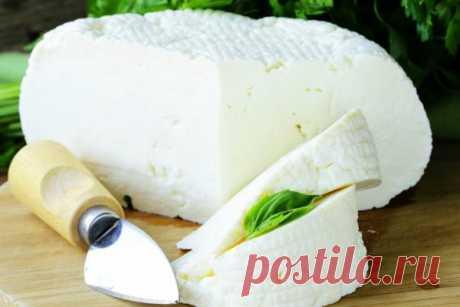 Как хранить адыгейский сыр в холодильнике в домашних условиях правильно