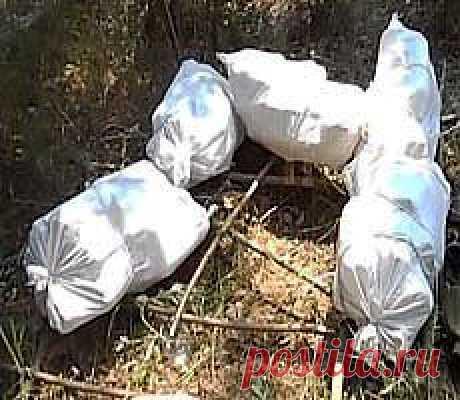 Плот из пластиковых бутылок | (: креатифф на дому :)
