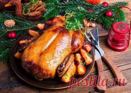 Письмо «👍 Отличные рецепты - идеи, что приготовить на праздники! 👌» — Команда Cookpad — Яндекс.Почта