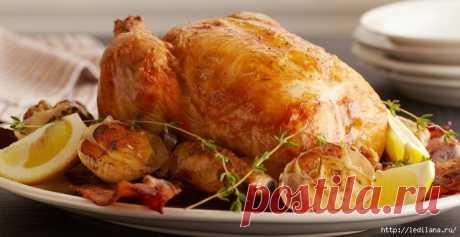 12 вкуснейших рецептов курицы