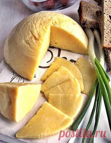 Домашний сыр за 30 минут | просто здорово! | Яндекс Дзен