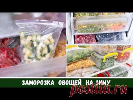 БОЛЬШАЯ Заморозка Овощей на Зиму 🥕 Что Я Заготовила 🍅 Смеси, Фрукты🍒 Что Готовить 🍆