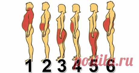 6 Типов Ожирения: Как Справиться с Каждым из Них. - Страна Полезных Советов - медиаплатформа МирТесен