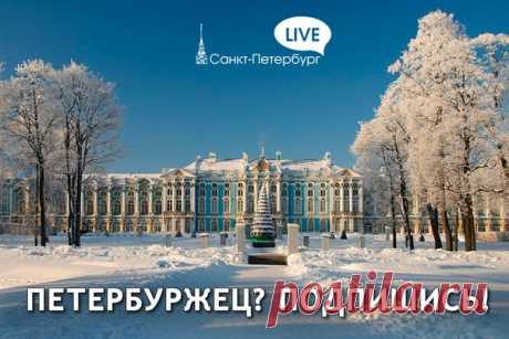 Санкт-Петербург Live